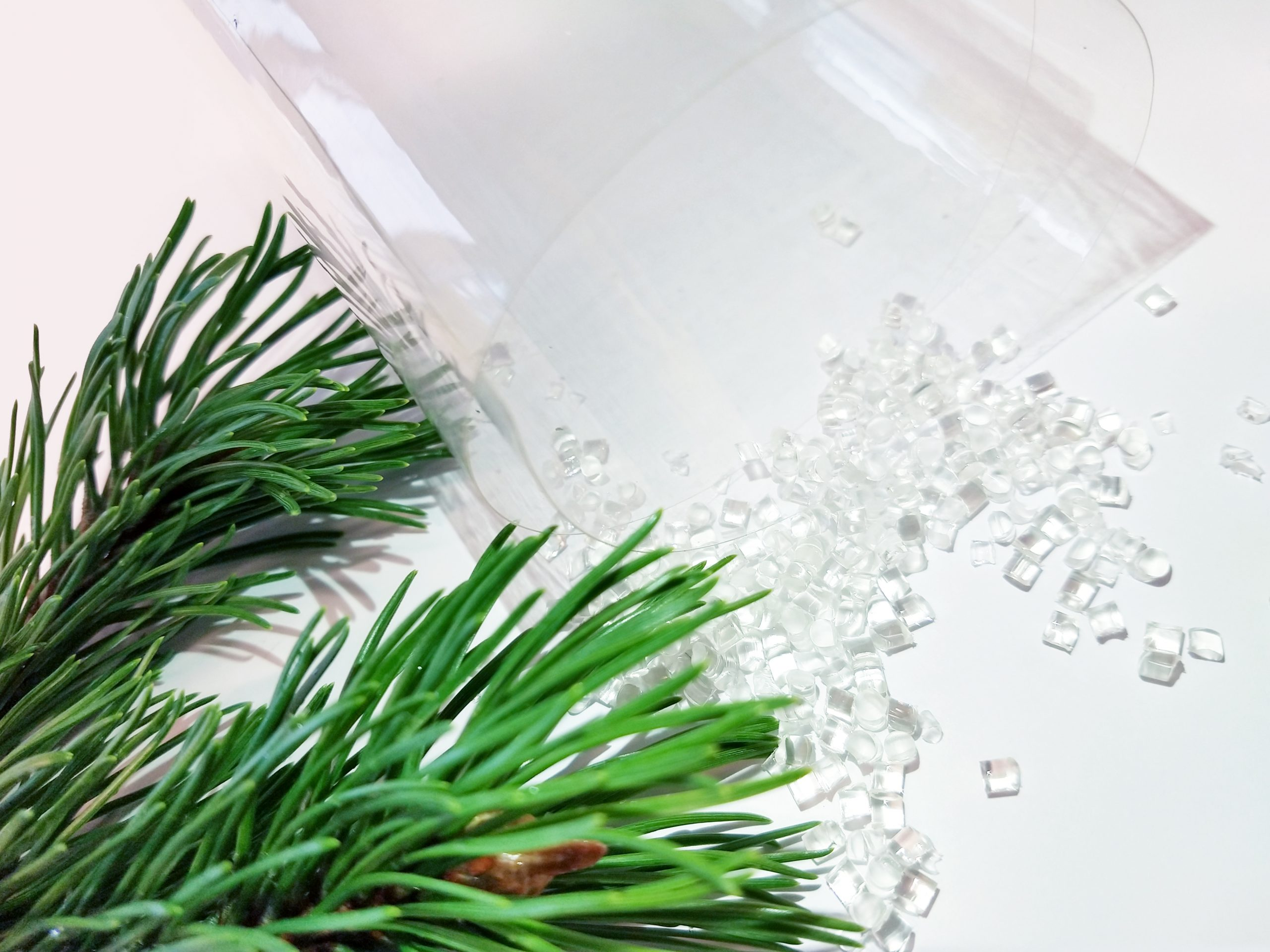 Woodly's wood-based plastic is transparent