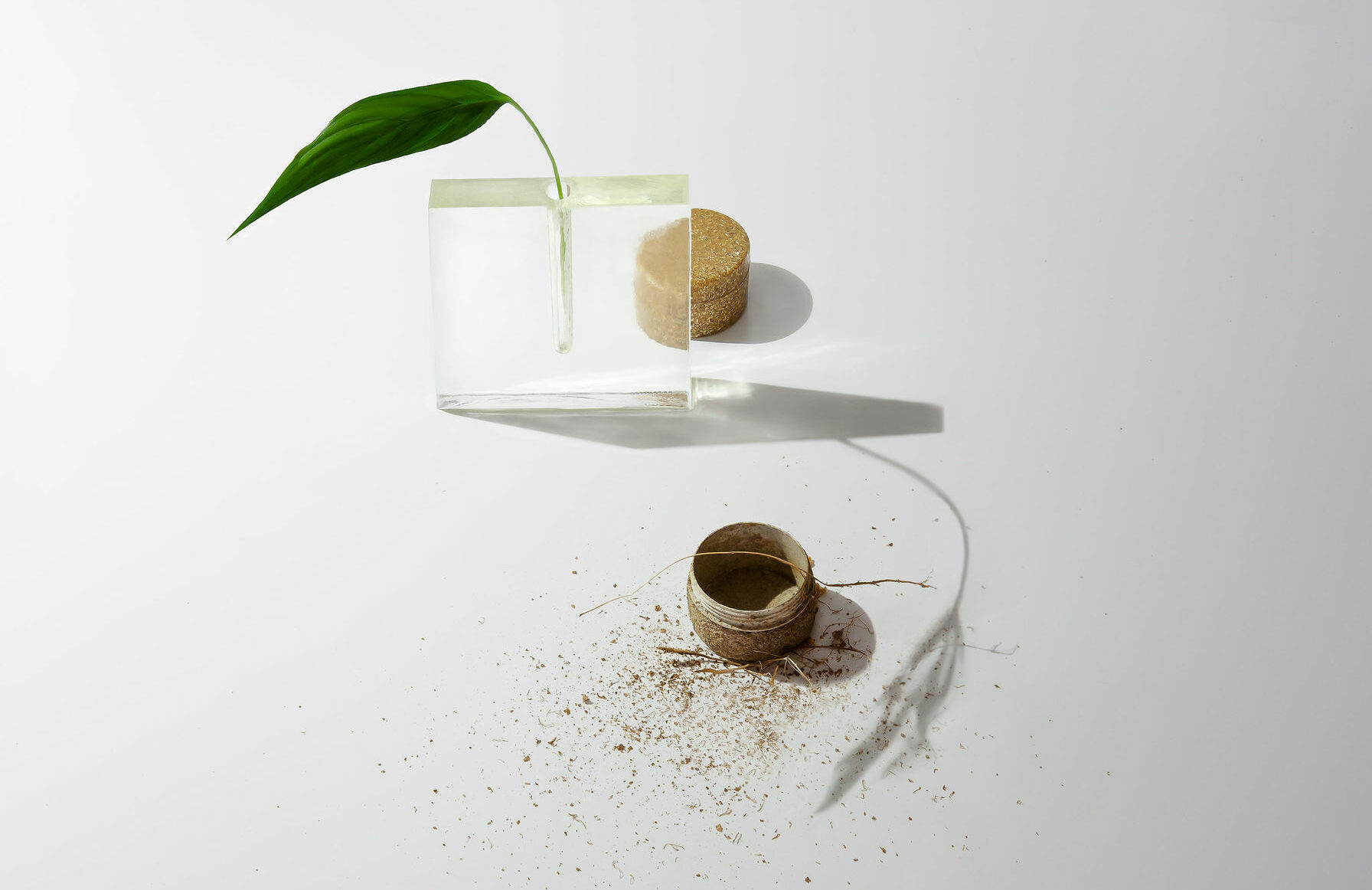 Jars for water-based cosmetics that biodegrade